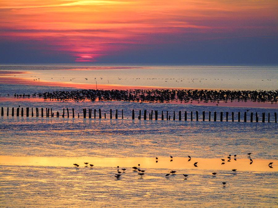 Sunset by Lars  on 500px.com