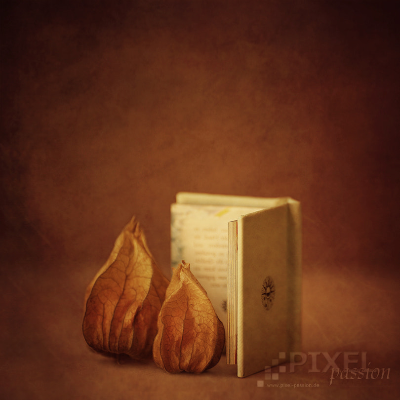Photograph bedtime stories by Pixel Passion on 500px