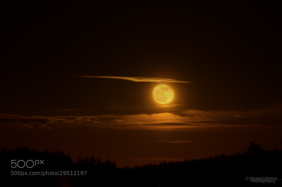 Photograph Blood moon rising by Vegard Hamar on 500px