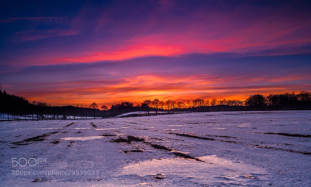 Photograph Spring Evening by Sebastian  Warneke  on 500px