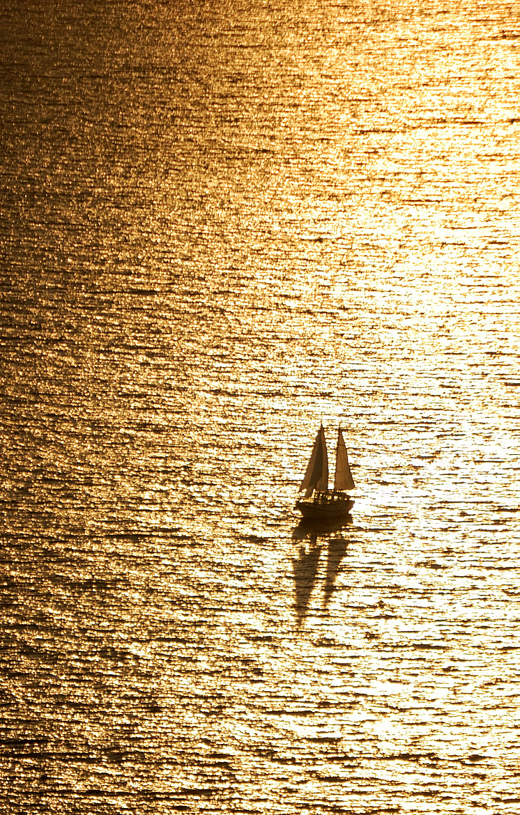 Photograph Golden Sailing by Csilla Zelko on 500px