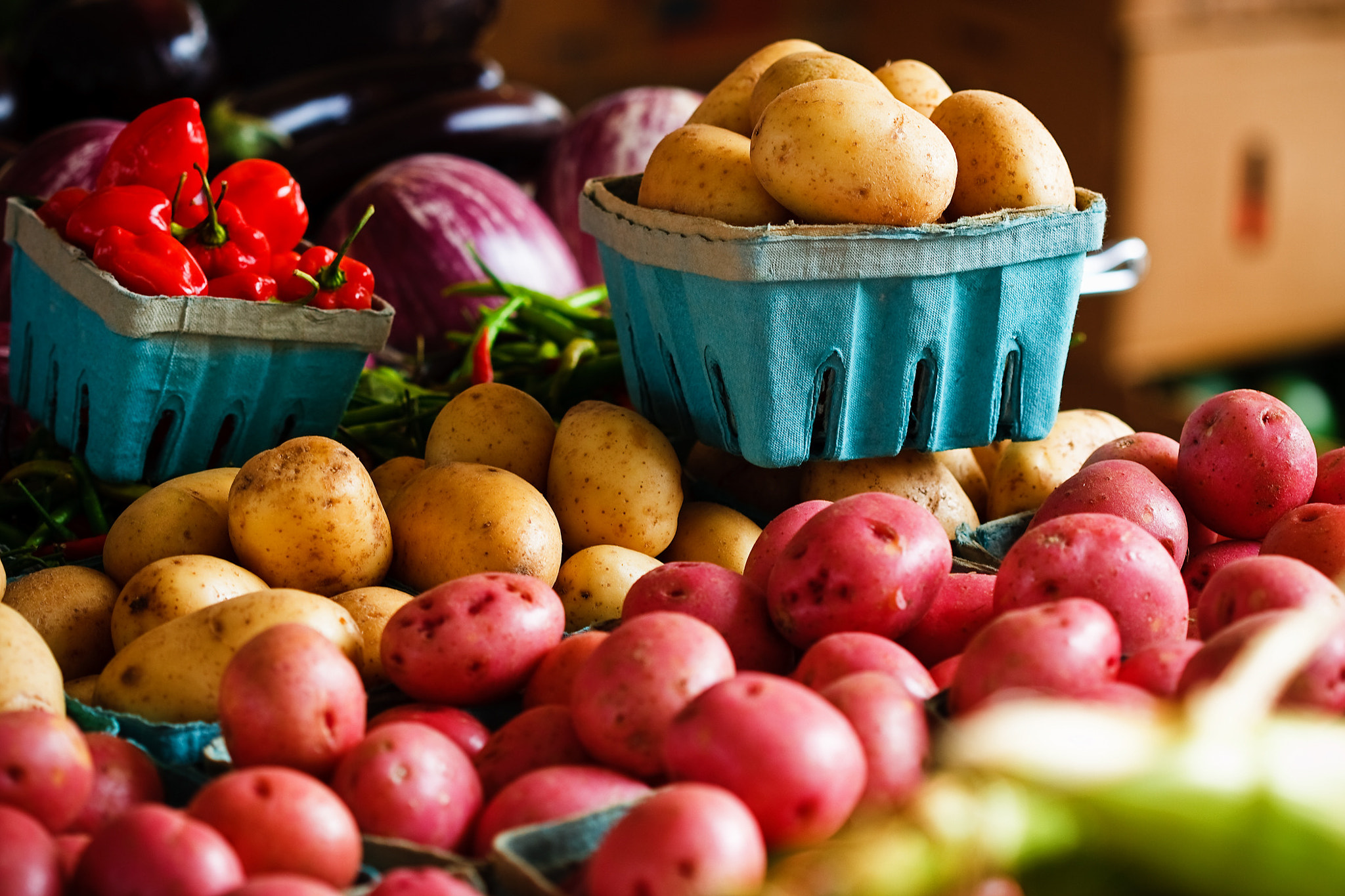 Photograph Colorful Taters by Michael Thompson on 500px