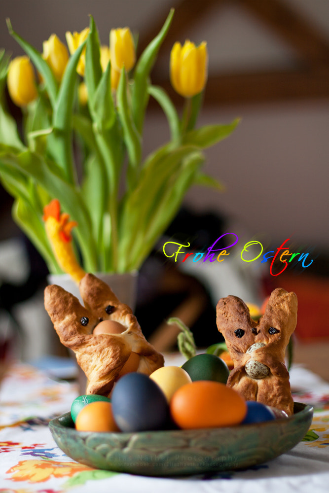 Photograph Happy Easter by Elias Näther on 500px