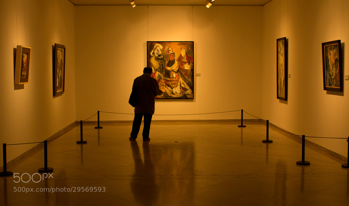 Photograph in museum by carlos-p on 500px