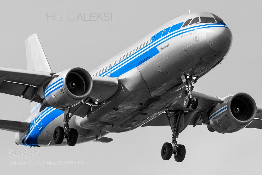 Photograph Silver Bird by Aleksi Hämäläinen on 500px