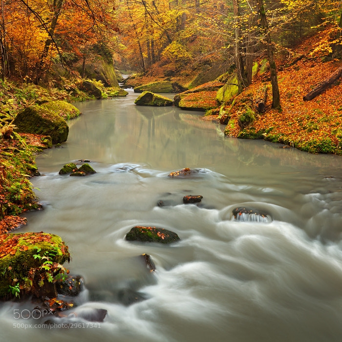 Photograph Autumn Creek II by Daniel Řeřicha on 500px