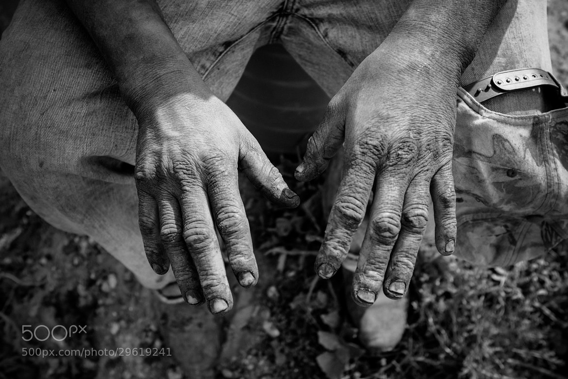 Photograph Working Hands by William Stern on 500px