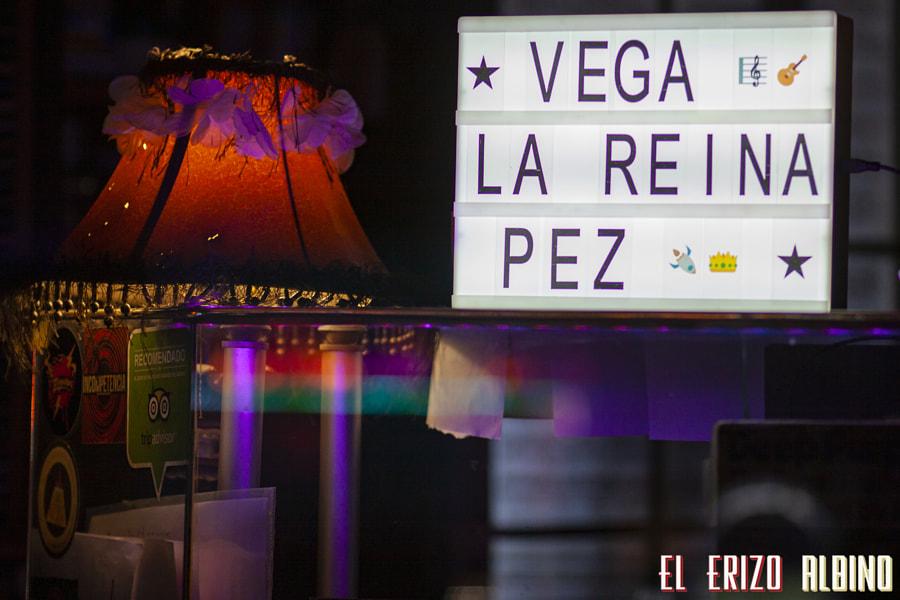 Vega (Café Teatro Central, Baeza - 22.02.2019) by Erizo Albino on 500px.com