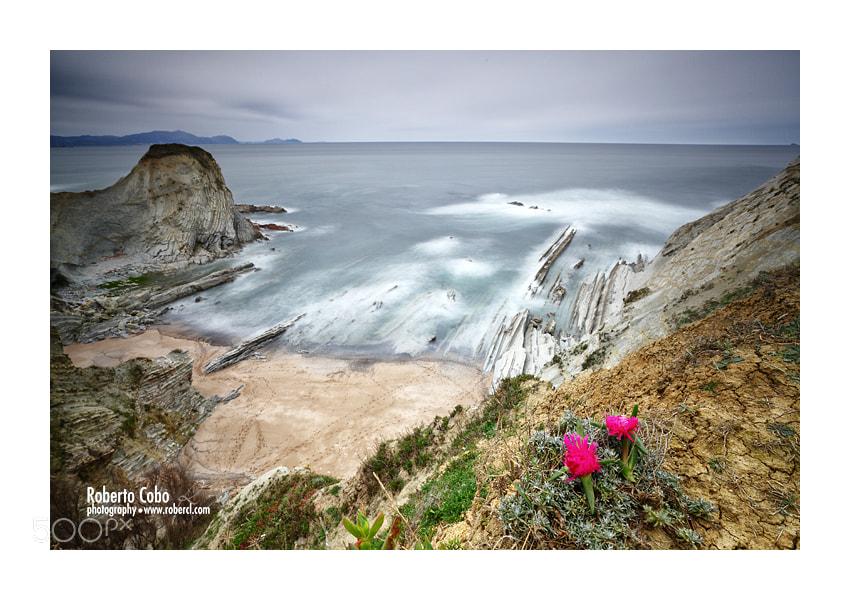 Photograph Nostalgic Morning by Roberto Cobo on 500px