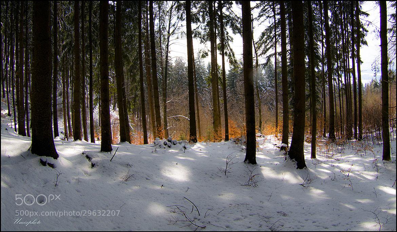 Photograph Winter-Autumn Mood by Jaro Miščevič on 500px