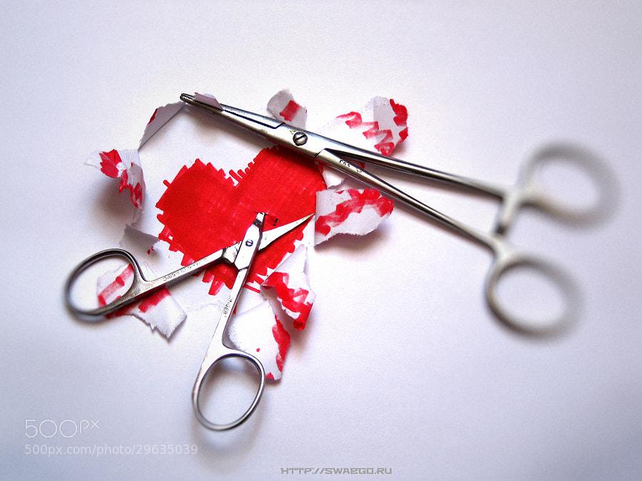 heart by Tolik Maltsev on 500px.com