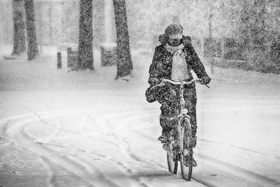 Photograph Snowclist by Ton Heijnen on 500px