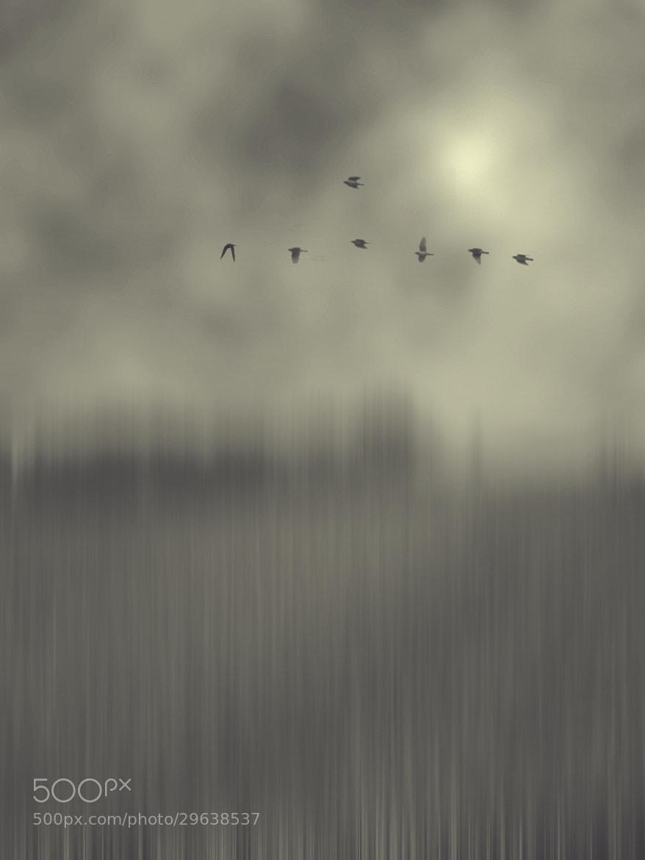 Photograph Serenity VI by Kaleem taj Shaik on 500px