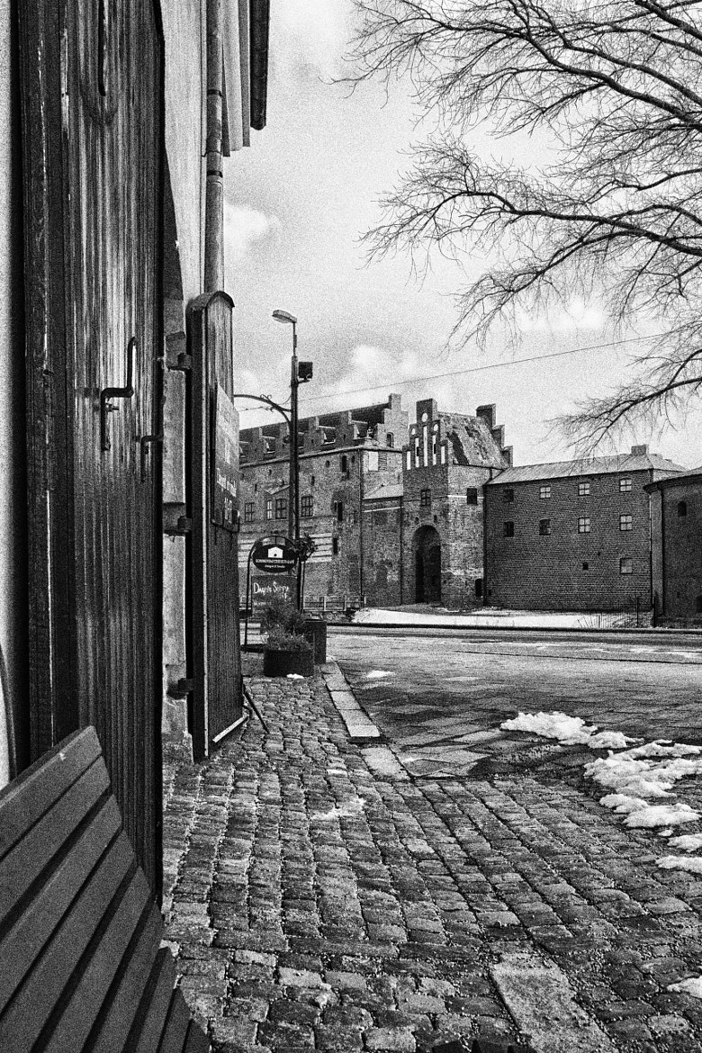 Photograph Malmöhus by Peter Jeppsson on 500px