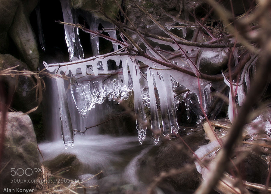 Photograph Icicles by Alan Konyer on 500px