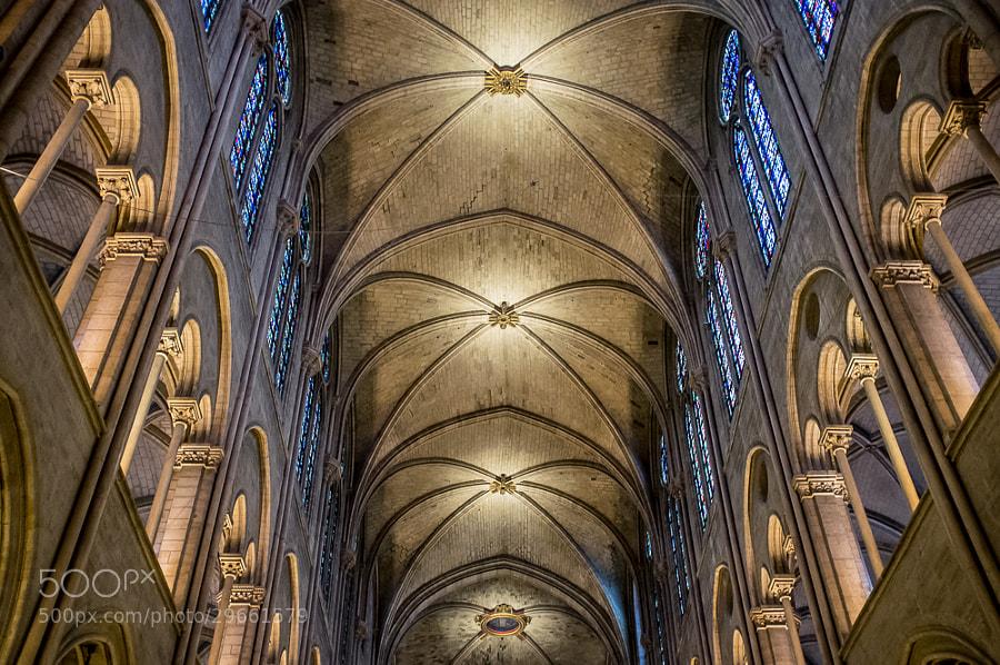 Ceiling of Notre Dame in Paris