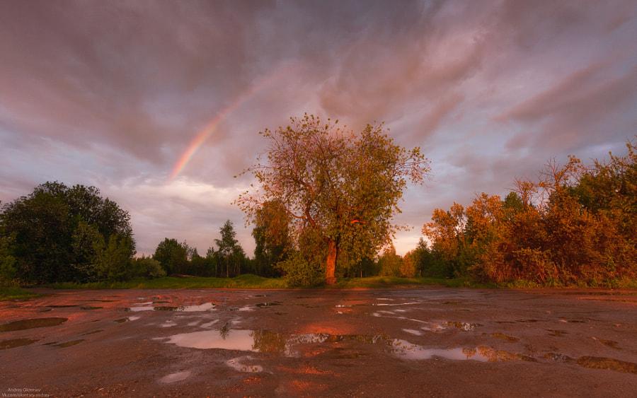 После дождичка в четверг. by Андрей Олонцев on 500px.com