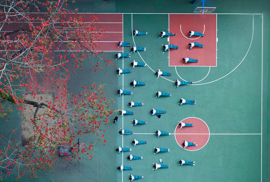 红棉树下的体育课 by Basic on 500px.com