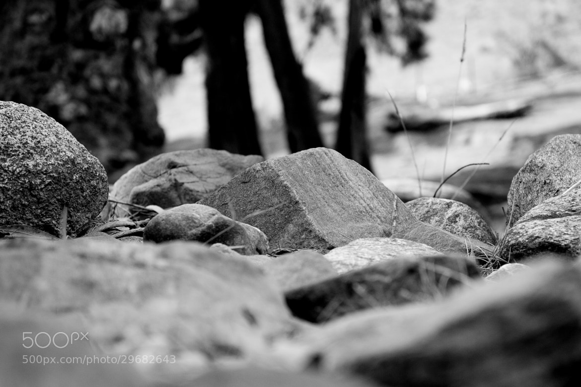 Photograph river stones by alistair noble on 500px