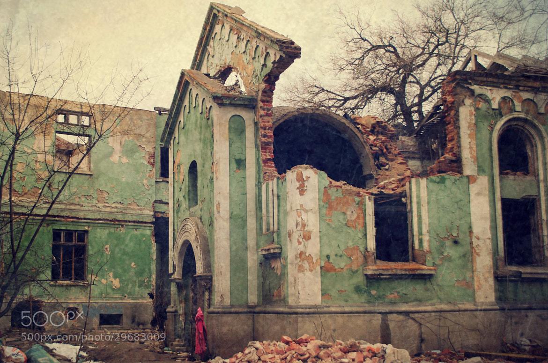 Photograph Silent death by Ioana San on 500px