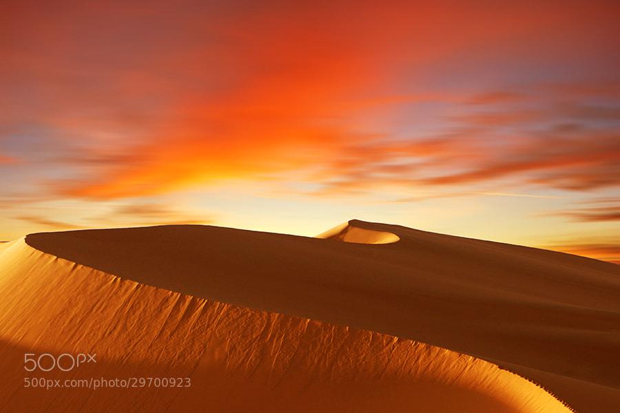 Photograph Desert Storm by Mostafa Ammar on 500px