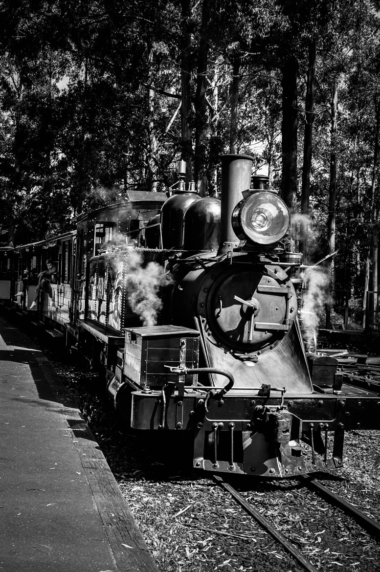 Photograph Puffing Billy by Ricky Lam on 500px