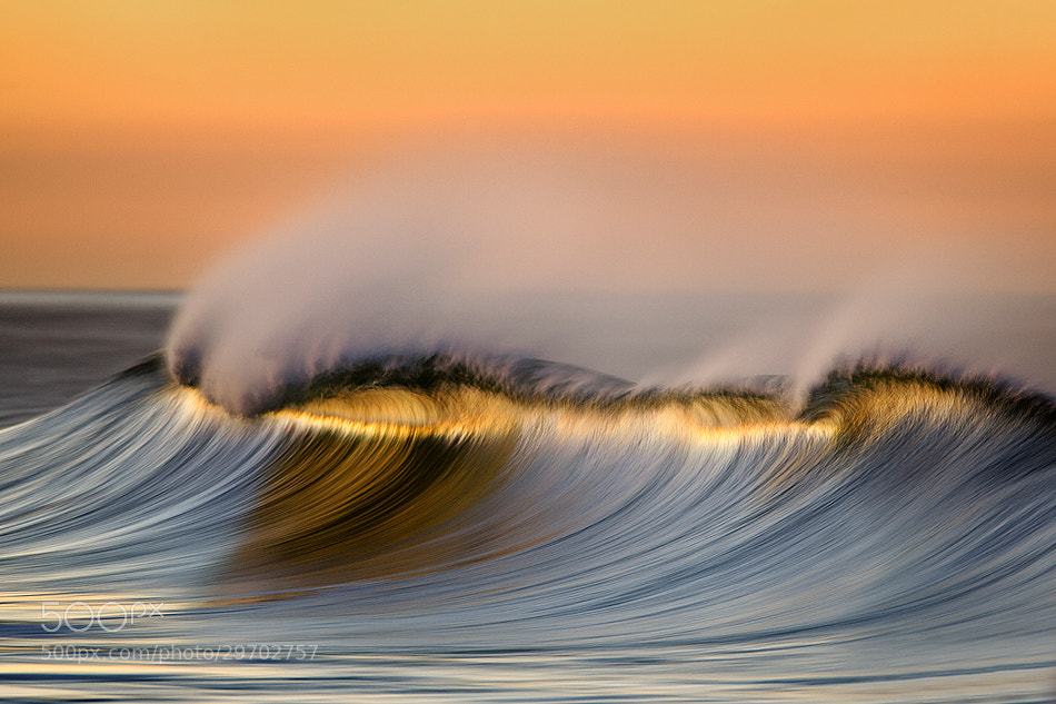 Photograph MG_4135 Long Crest by David Orias on 500px
