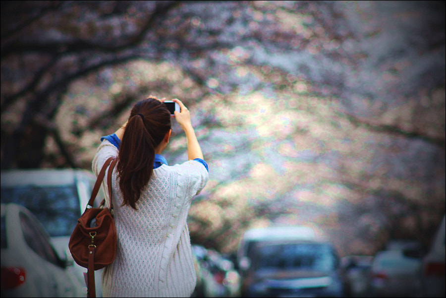 Photograph Blooming by D W Kim on 500px