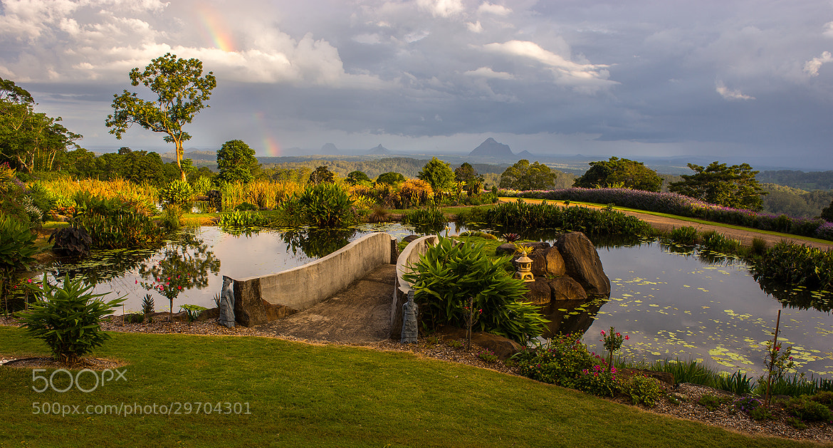 Photograph Maleny Botanic Garden by Anthony Byron on 500px