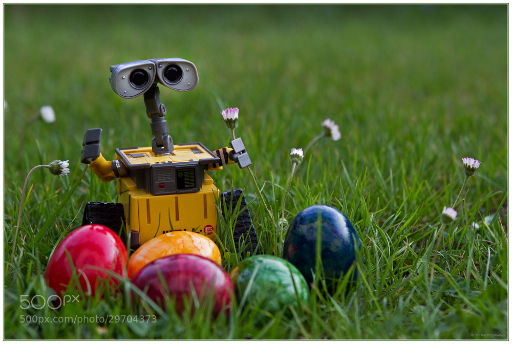 Photograph Happy Easter :) by Tobi K on 500px