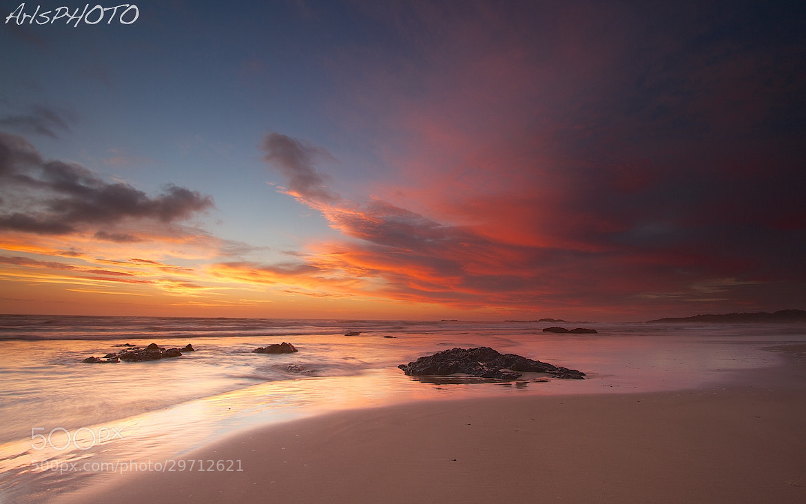 Photograph Rush of Colour  by Adam Smith on 500px