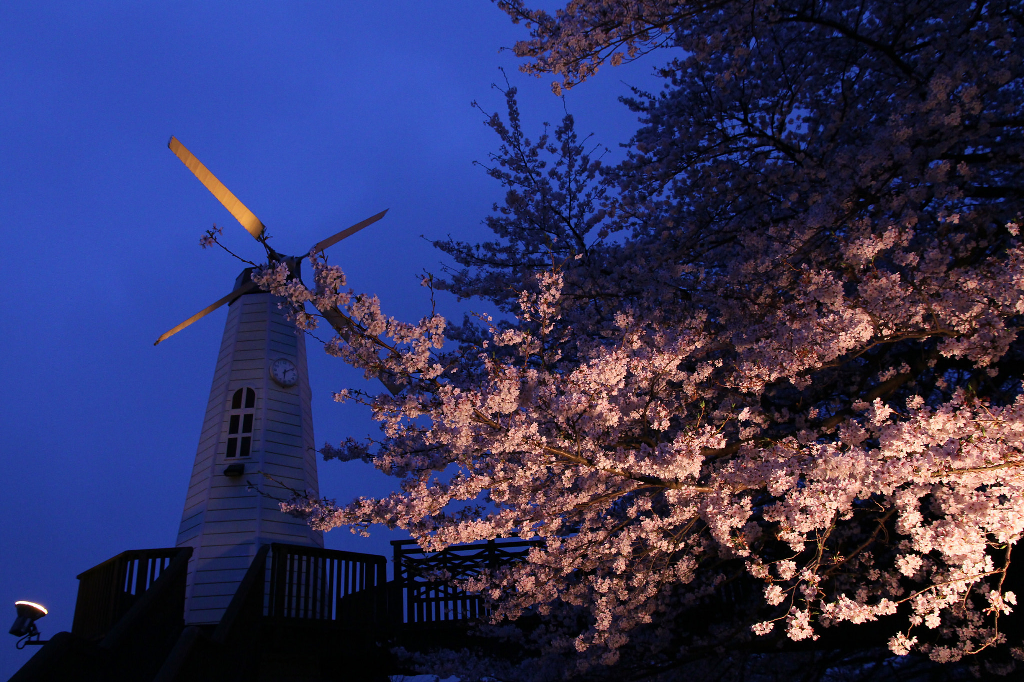 Photograph Windmill by THE TOKYO FOREST on 500px