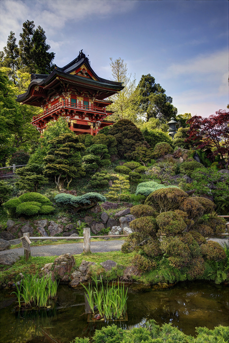 Photograph Japanese Tea Garden by Frank Kehren on 500px