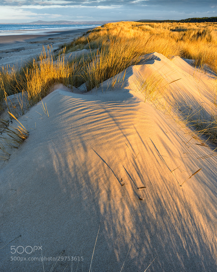 It's amazing to observe how these dunes change under different lighting and weather conditions. I've lived in Lossiemouth all of my life and have made photographs here hundreds of times over the years I suppose but it is an area which still never fails to surprise me with it's beauty.