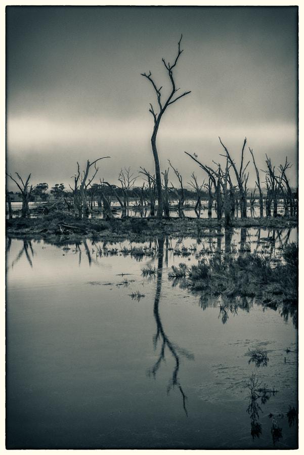 Yenyenning Lake by Paul Amyes on 500px.com