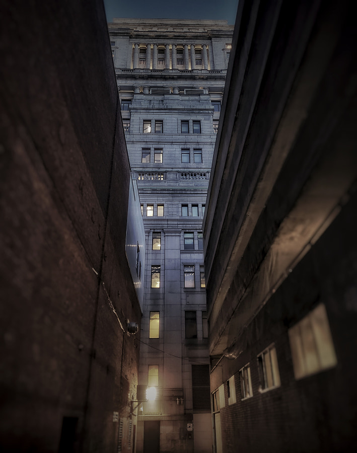 Lookup by Stef on 500px.com