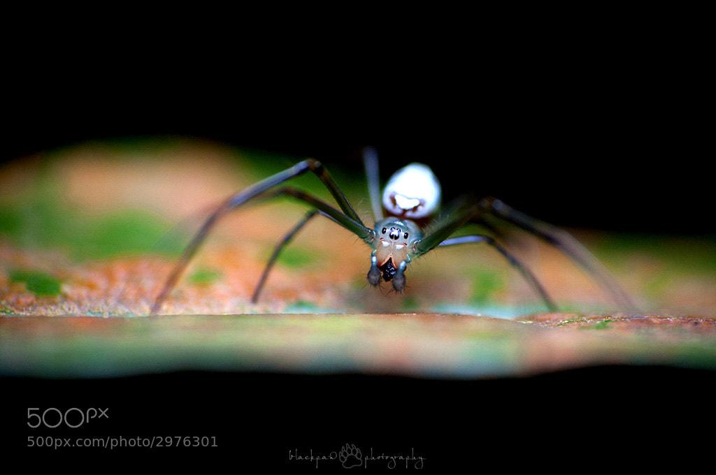 Photograph Mr Unknown by Nadzli Azlan on 500px