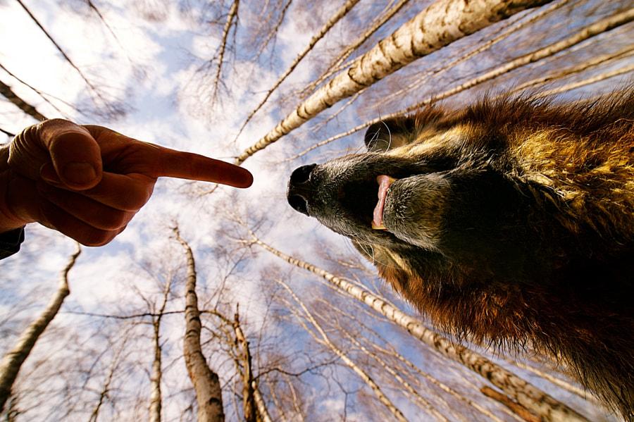 hard rules by Sebastian Luczywo on 500px.com