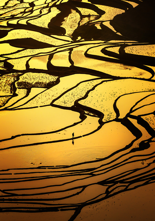 Yuanyang rice terraces(????) #1 by Woosra Kim on 500px.com