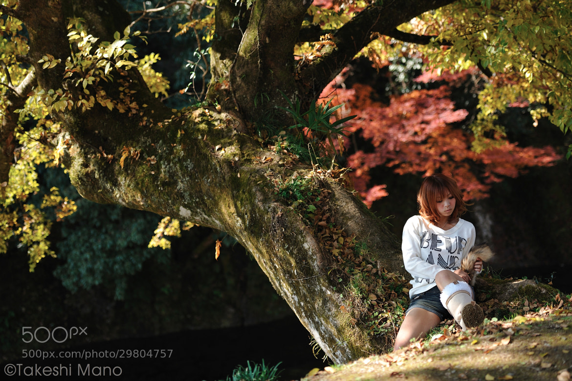 Photograph autumn by Takeshi Mano on 500px