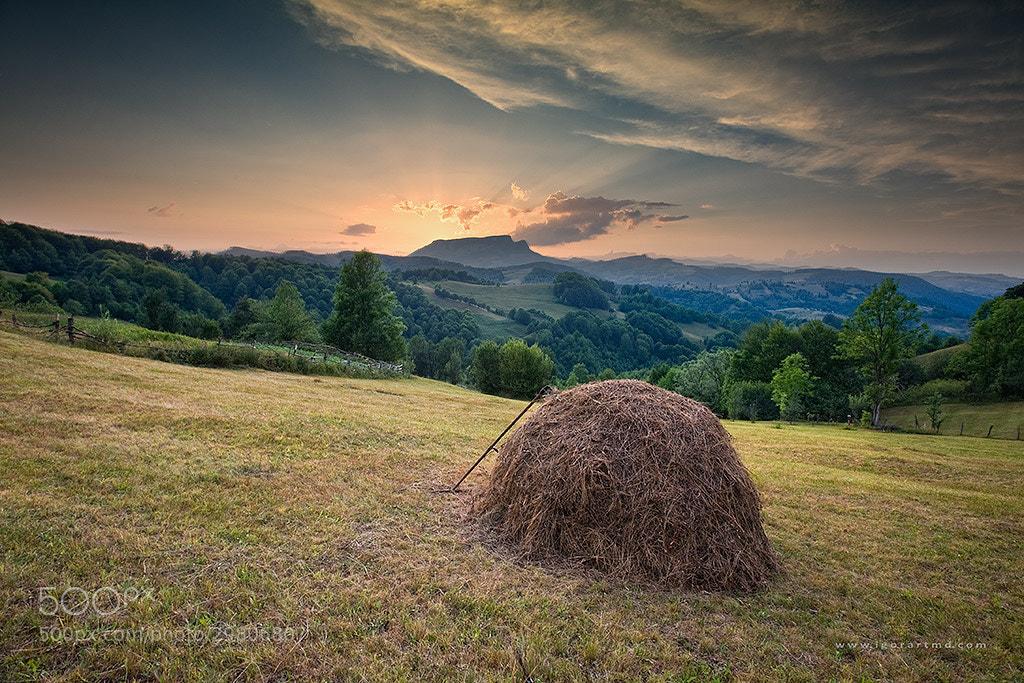 Photograph *** by Igor Sirbu on 500px