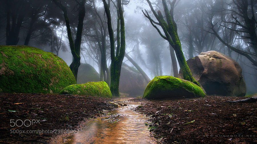 Photograph gateway by Nuno Mota on 500px