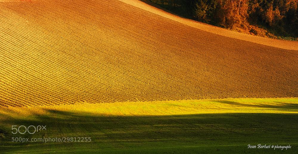 Photograph Land by Ivan Bertusi on 500px