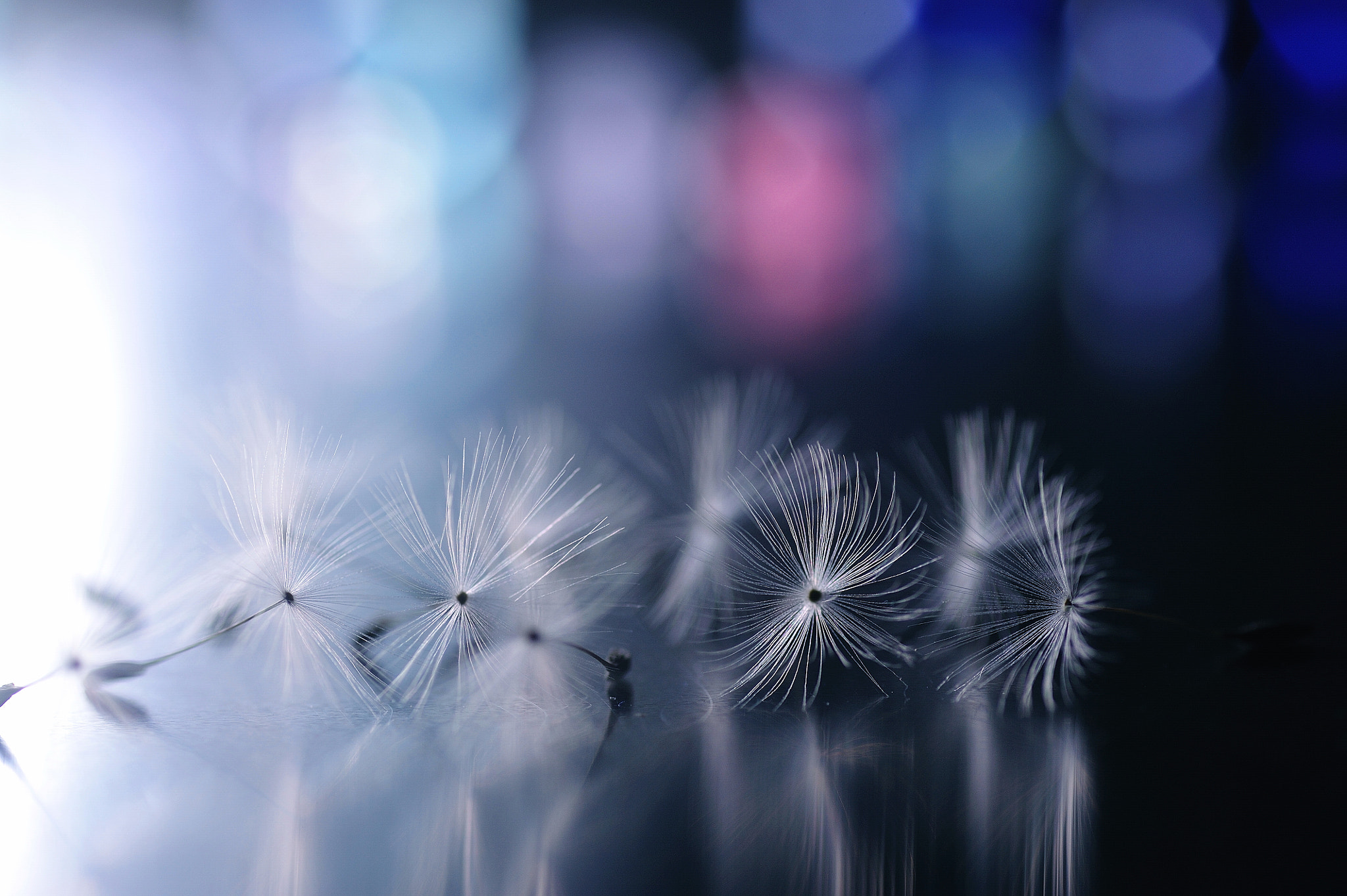 Photograph Across the Midnight by Lafugue Logos   on 500px