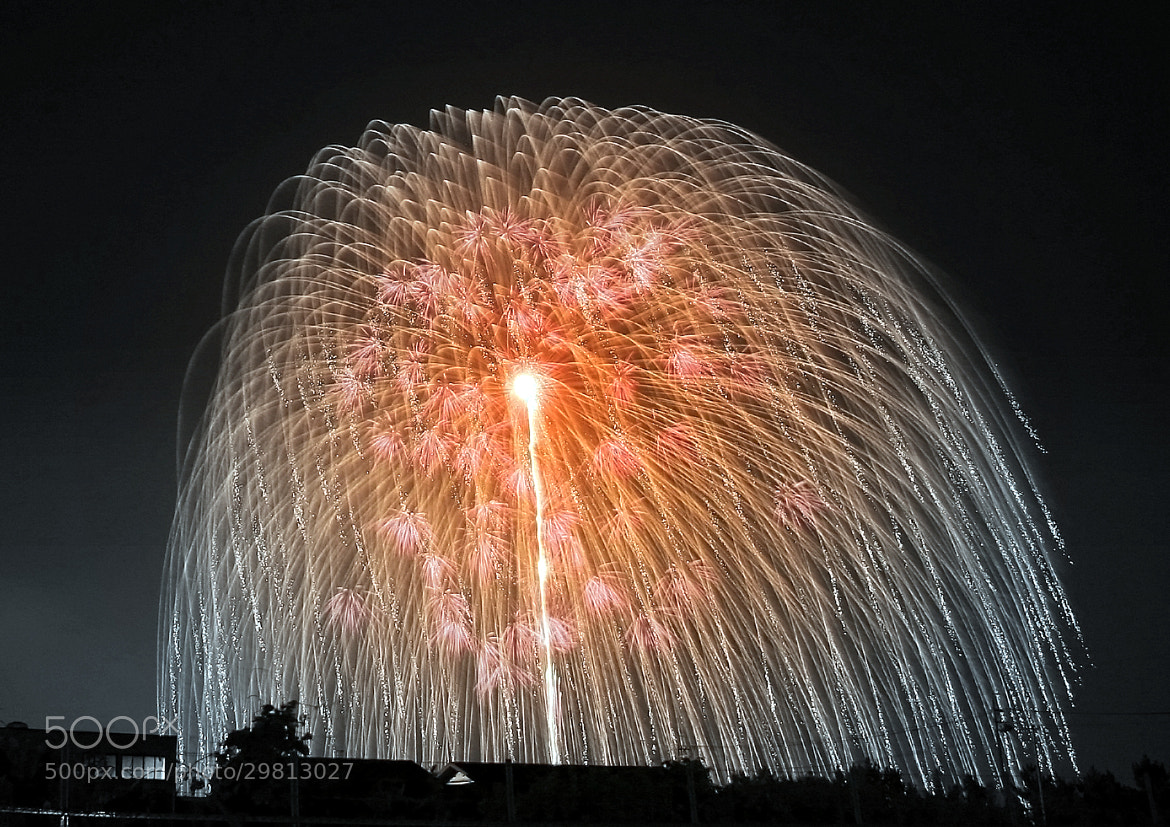 Photograph Big Bang (Japanese fireworks) by yume . on 500px