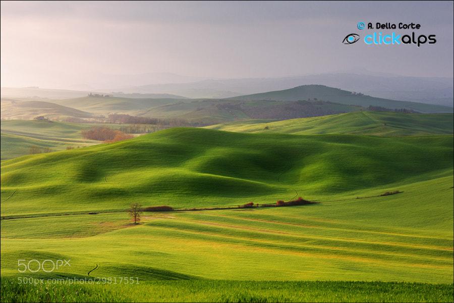 Photograph Un Attimo di Luce ..  by Alfonso  Della Corte  on 500px