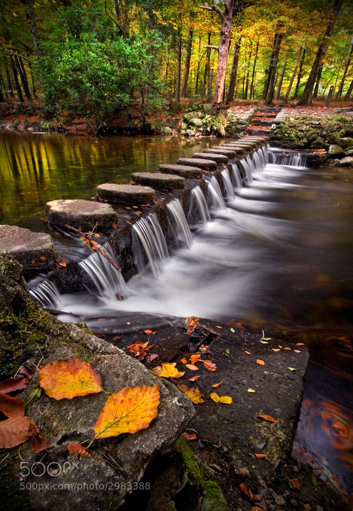 Photograph Autumn Steps by Stephen Emerson on 500px