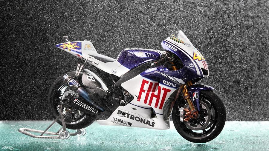 High quality handmade model of Yamaha YZR-M1'09 №46 Valentino Rossi (Fiat Yamaha Team) scale 1/12 (length175 mm)