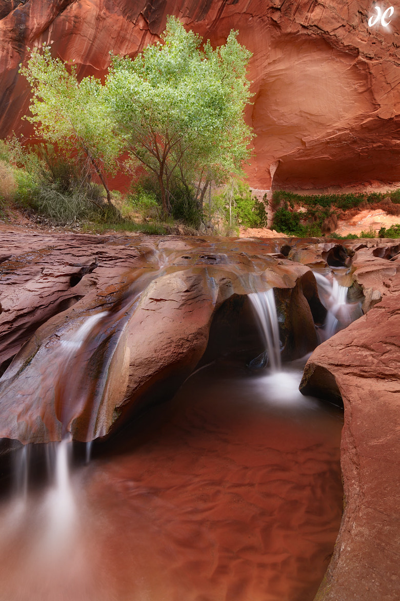 Photograph Coyote Falls by Joshua  Cripps on 500px