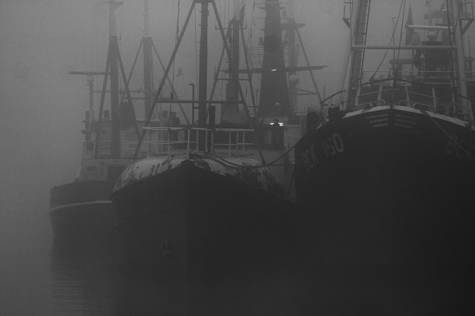 Photograph Fogged ships by Ton Heijnen on 500px